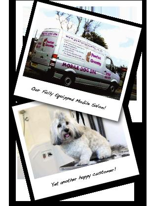 Pawfect Mobile Dog Grooming